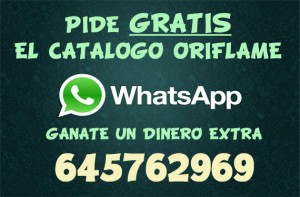 whatsapp-android2