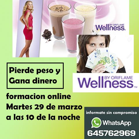 Presentación online Wellness